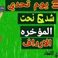 شد & نحت الافخاد -تحدي 30 يوم - YouTube