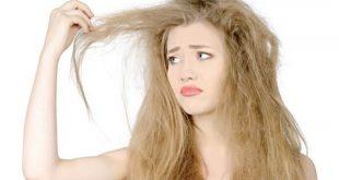 حصني شعرك ضد الرطوبة والبرد - صحيفة الأيام البحرينية